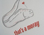 That's a Moray - Letterpressed Card