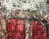 Red Doors with Fence Color Glossy Digital Photograph