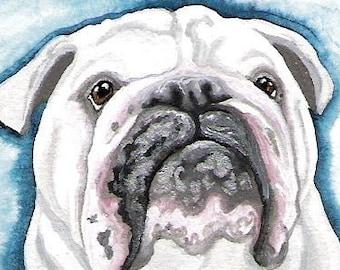 Your Pet Bird Cat Dog Custom Portrait in Gouache-5 x 7