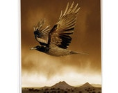 Raven over Eldorado, special price on print matted to 20x24