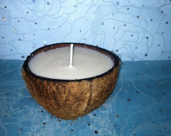 Unscented Soy Wax Candle in a Genuine Coconut, Environment & Bird Safe
