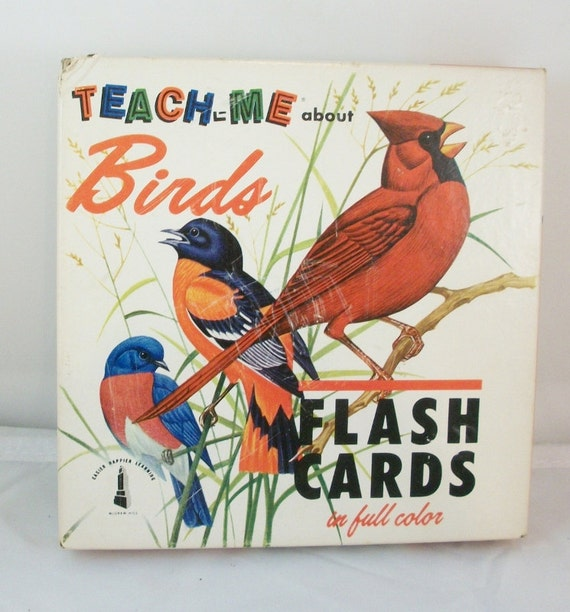 1962 Flash Cards  Teach Me About Birds  48 cards in Box  3 x 6 cardstock design