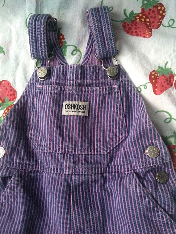 Pink and Purple Overalls 2T