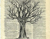 LONELY TREE....  print of an original pencil and pen ANATOMICAL ILLUSTRATION ON AN OLD DICTIONARY PAGE