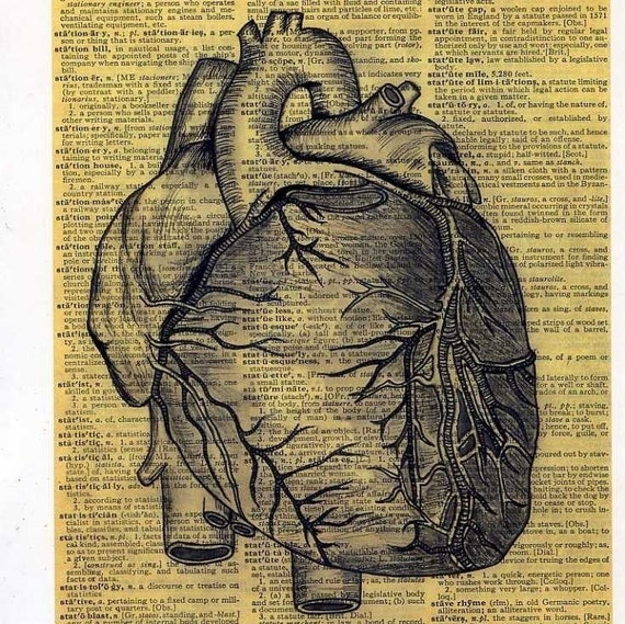 BEATING HEART  print of an original pencil and pen ANATOMICAL ILLUSTRATION ON AN OLD DICTIONARY PAGE