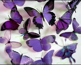 12 x Mixed Purple 3D Transparent Butterflies