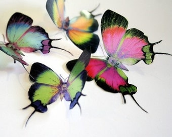 B057 x 12 3D Butterflies for use in Weddings, Decorations and Crafting