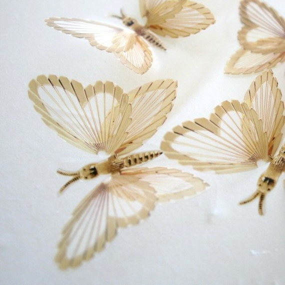 B124 Gold x 12 3D Butterflies for use in Weddings, Decorations and Crafting