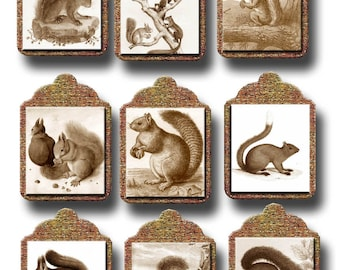 SQUiRRELS- Primitive ViNtAgE ArT Hang/Gift Tags-CHaRMiNG Printable Collage Sheet  JPG Digital File-NeW LoWER PRiCE