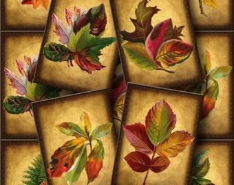 RUsTiC Leaves/Foliage Vintage Art Tags/Labels/Cards-craft supplies -INSTaNT DOWNLoAD- Printable Collage Sheet Download JPG Digital File