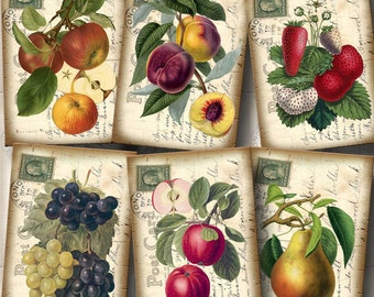 FRUIT-Grapes, Strawberries, Plums, Apples -CHaRMiNG Vintage Art Tags Cards Labels- Printable Collage Sheet JPG Digital File
