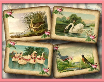 Vintage Art Hang/Gift Tags/Cards/Scrapbooking -RoMaNTiC- SWaNS & BiRDS -Printable Collage Sheet JPG Digital File-NeW LoWER PRiCE