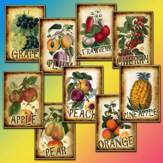 FRUIT- Vintage Graphics Tags/Cards -  Printable Collage Sheet JPG Digital File - Instant Download -Paper Crafts-New Lower Price
