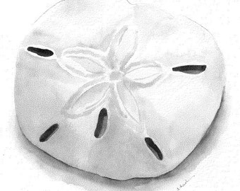 Sand dollar 8x10 watercolor print with white mat