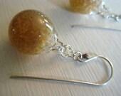 Harvest Golden Earrings