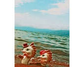 retro seahorse print aceo size SEA The PRETTY HORSES