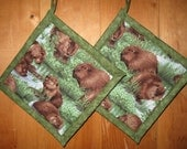 Set of TWO Beaver in the Pond  Holders, Beaver Holders, Beaver Potholders, Beaver Theme Kitchen
