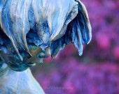 """Statue Photograph, Face, Portrait, Still Life Picture, Landscape, Purple, Blue,  - 8x10 inch Print - """"Thinking of Plum"""""""