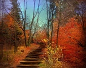 Fall Photograph, Nature Photo, Landscape Picture, Autumn, Red, Blue, Orange, Brown, Yellow, Stairs- 8x8 inch Print -Fall As I Remember It