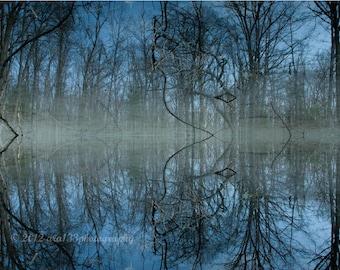 Woodsy Photography Art Trees Nature Lake Enchanted Nature Decor Blue Wall Art 5x7 inch Fine Art Photography Print Deep Cool Blu