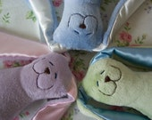 Personalized Small Minky Snuggle Bunny with your child's name