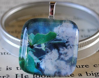 Woodland Photo - White Blossoms - Florida Flurries Glass Tile Pendant by Happy Shack Designs