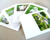 Spring Greeting Cards Set: Baby Lambs Farm Barn Life Collection