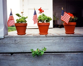 4th of July Patriotic Country Celebration American Flag Original Photography
