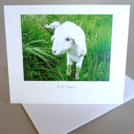 Spring Greeting Card Lamb Baby Country Life Lady Gaga