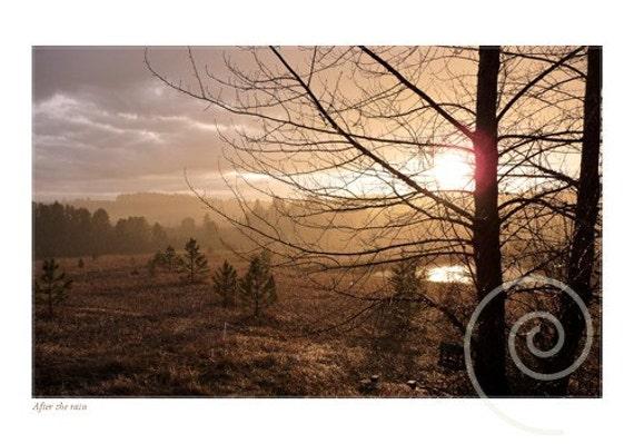 Photograph Autumn Rain at Sunset Fine Art