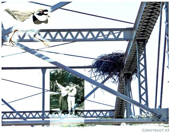 Fine Art Photography Photomontage Bird Nest Construct No. 5