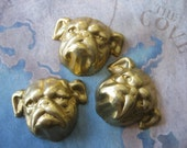 2 PC Raw Brass Bull Dog Stamping - NN04