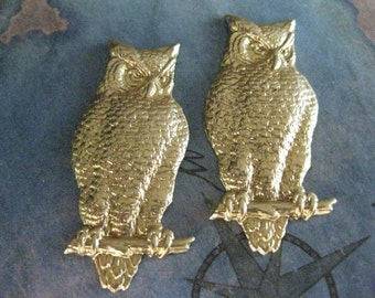 2 PC Raw Brass Wise Owl Charm / Large V0021