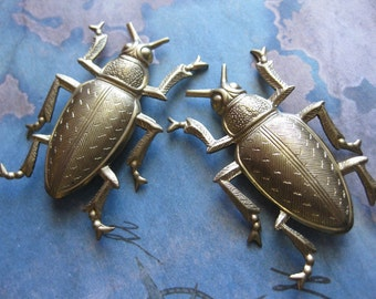 1 PC Extra Large Fancy Brass Beetle Stamping / Dimensional - KK23