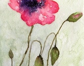 Pink Poppy Giclee PRINT from originl watercolor painting8.5x11