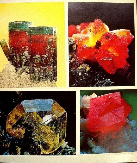 VINTAGE Photographic Art Prints MINERAL SPECIMENS Set of 4