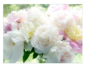 Peony Card,  Blank Flower Greeting Card, Wedding Card, Fine Art Card