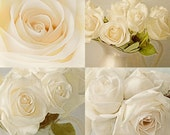 White Rose Print Set, Rose Still Life Set, Vintage Inspired Wedding Decor, French Country Wall Decor, Country Chic Decor