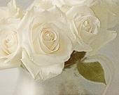 White Rose Photograph,  Flower Still Life, Wedding Bouquet Wall Decor