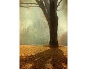 Autumn Photography, Landscape Photograph,  Maple Tree Photo,  Mist Gold  Wall Decor,  Surreal, Sunset,