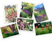 Six Flower Greeting Cards, Garden Photo Cards, Blank Cards, Poppy, Foxglove, Rose, Iris, Coneflower, Tulip