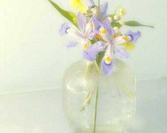 Iris Print,  Still Life Photography, French Country Wall Decor, Fine Art Print,  Floral Decor, Bohemian Art