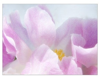 Pink Peony Card, Blank Flower Greeting Card, Mothers Day Card, Photo Card
