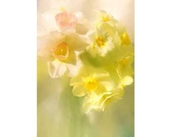 Jonquils Photo Card, Fine Art Photograph Note Card, Daffodils