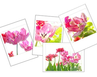 Parrot Tulip  Photo Cards, Four Blank Cards, Pink  Flower Photographs Card Set, Greeting Card Set