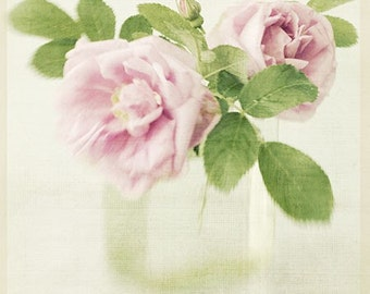 Rose Art, Still Life Flower Print, Rose Photography,  Floral Art Print, Shabby Chic Home Decor, Rose Print