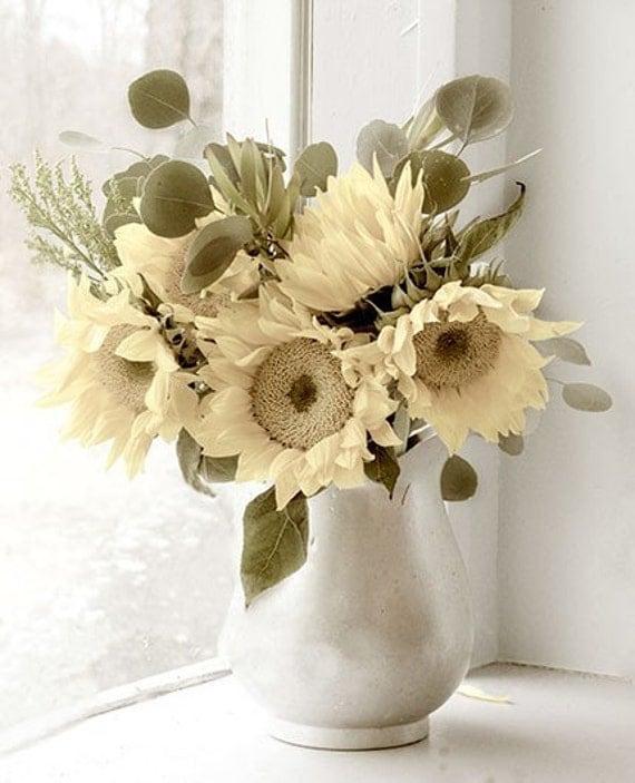 Vintage Sunflower Wall Decor : Sunflower photograph still life floral wall decor by