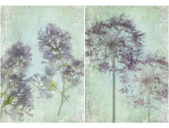 Botanical Wall Decor, Two Giclee  Art Prints, Scanned Flowers, Allium, Lilacs, Sheer X-ray Effect - French Country Still Life
