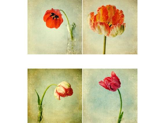 Red Tulips Wall Decor,   Flower Print Set,  Botanical Art Print Set,  Shabby Chic Decor, Rustic Decor, Photo Set
