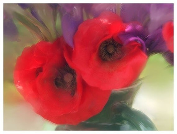 Red Poppy Card,  Floral Card, Blank Card, Flower Photography, Floral Art Print